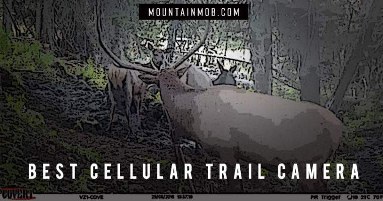 best cellular trail camera that sends photos to your phone